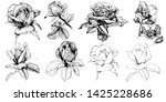 wild flowers roses isolated.... | Shutterstock .eps vector #1425228686