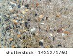 seabed  view through clear water | Shutterstock . vector #1425271760