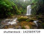 beauchamp falls a waterfall in... | Shutterstock . vector #1425859739