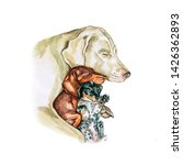 Watercolor Illustration Of A...