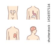 ill human organs color icons... | Shutterstock .eps vector #1426557116