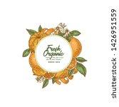 citrus round design template.... | Shutterstock .eps vector #1426951559