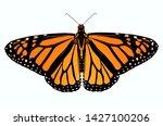 beautiful african queen... | Shutterstock . vector #1427100206