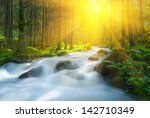 Rushing River In A Forest