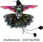 bird hummingbird with open... | Shutterstock .eps vector #1427162960