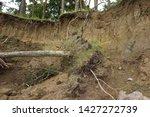 Slide Soil Erosion  Row Of...
