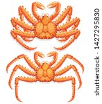 alaskan king crab. vector... | Shutterstock .eps vector #1427295830