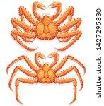 alaskan king crab. vector...   Shutterstock .eps vector #1427295830