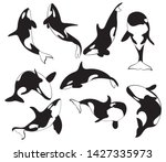 set of killer whales.... | Shutterstock .eps vector #1427335973