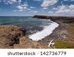 savane des petrifications ...   Shutterstock . vector #142736779