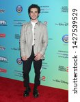 Small photo of LOS ANGELES - JUN 16: Cameron Boyce at the ARDYs: A Radio Disney Music Celebration at the CBS Studio Center on June 16, 2019 in Studio City, CA