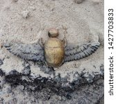 Small photo of Photo Egyptian Scarab Mascot with wings. The scarab symbol is a gold find during excavations. Figurine Scarab beetle lying on the sand.
