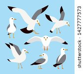 Sea  Ocean  Gull  Bird In A...