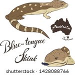 blue tongue skink vector image... | Shutterstock .eps vector #1428088766