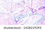 winter landscape of snowy tree... | Shutterstock . vector #1428219293