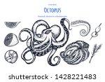 octopus .set of seafood. hand... | Shutterstock .eps vector #1428221483