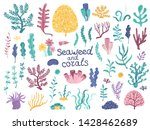set of vector algae and corals | Shutterstock .eps vector #1428462689