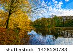 autumn forest river tree... | Shutterstock . vector #1428530783