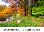 autumn forest river trees view. ... | Shutterstock . vector #1428530786