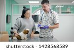 Veterinarian And Assistant In...