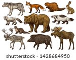 Set Of Wild Animals. Brown...