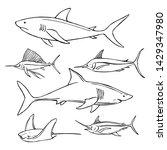 Hand Drawn Sea Fish. Sharks....