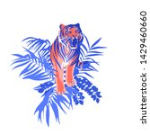 walking and snarling tiger... | Shutterstock .eps vector #1429460660