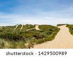 pathways through sand dunes at... | Shutterstock . vector #1429500989