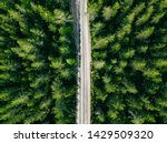 Aerial View Of Green Summer...