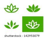 simple green lotus plant   set... | Shutterstock .eps vector #142953079