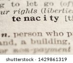 Small photo of Dictionary definition of word tenacity, selective focus.