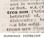 Small photo of Dictionary definition of word treason, selective focus.