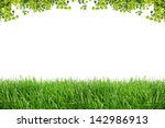 Green Leaves And Green Grass...