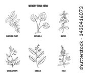 memory tonic herbs collection.... | Shutterstock .eps vector #1430416073