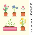 potted flower plants decoration ... | Shutterstock .eps vector #1430601953
