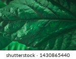 texture green leaf background ... | Shutterstock . vector #1430865440