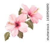 Watercolor Floral Illustration  ...