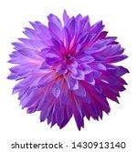 Light Purple Dahlia Flower On ...