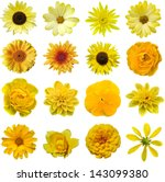Stock photo yellow collage flower 143099380