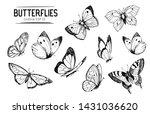 set of butterflies outlines.... | Shutterstock .eps vector #1431036620