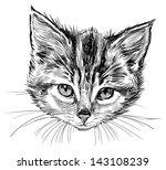 head of kitten | Shutterstock . vector #143108239