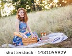 summer   provencal picnic in... | Shutterstock . vector #1431099929
