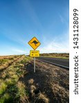 an iconic kangaroo road sign... | Shutterstock . vector #1431128099