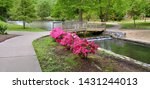 Hagerstown City Park, Hagerstown, Maryland