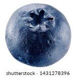 sluggish blueberries on a white ... | Shutterstock . vector #1431278396