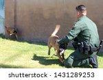 yuma sector  ariz.   us   april ...   Shutterstock . vector #1431289253