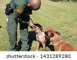 yuma sector  ariz.   us   april ...   Shutterstock . vector #1431289280