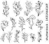 set of hand drawn flowers and...   Shutterstock .eps vector #1431466169