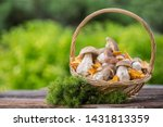 Mushrooms In The Basket. Raw...