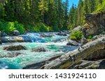 cooper river near salmon la sac ... | Shutterstock . vector #1431924110